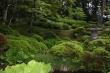 緑の風景・水戸