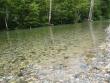 水のある風景