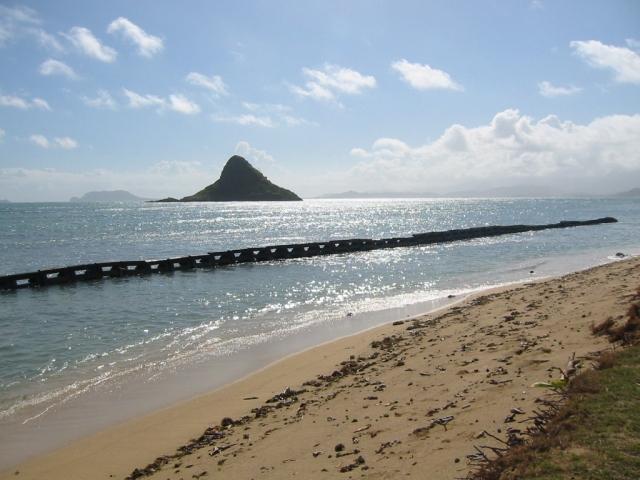 ハワイ/オアフ(HAWAII)
