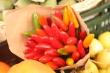 イタリアの野菜・果物・食材写真